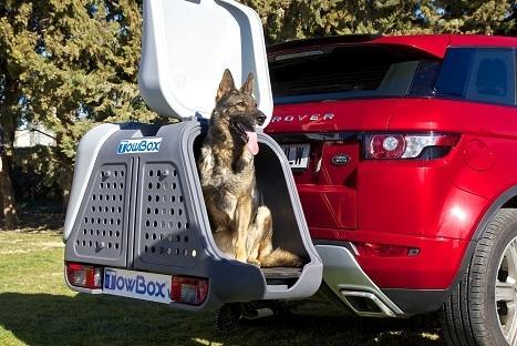 Portaperros homologado para transporte de animales
